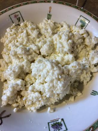 mozzarella curds