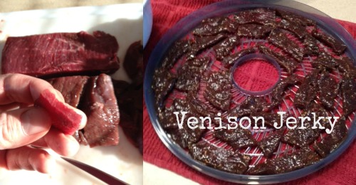 Venison Jerky Weve Tried It