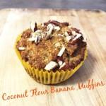 Coconut Flour Banana Muffins Recipe