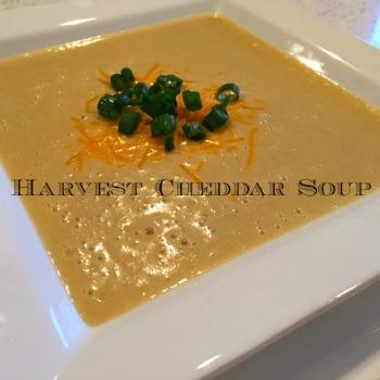 Harvest Cheddar Soup 350