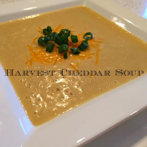 Harvest Cheddar Soup