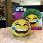 Chia Pet Emoji Decorative Planter Review